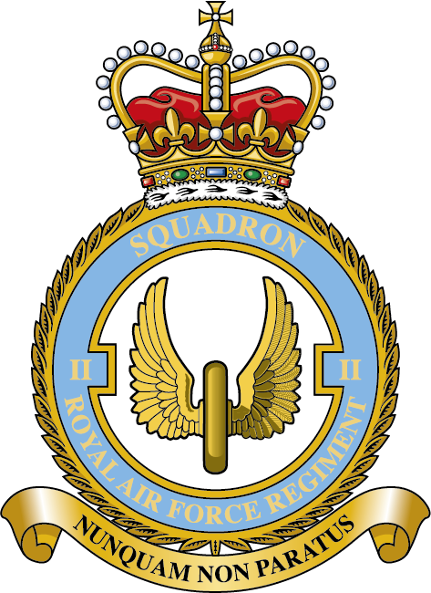 RAF Regiment train with the French Air Force - RAF