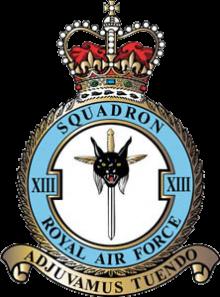 13 Squadron RAF Badge